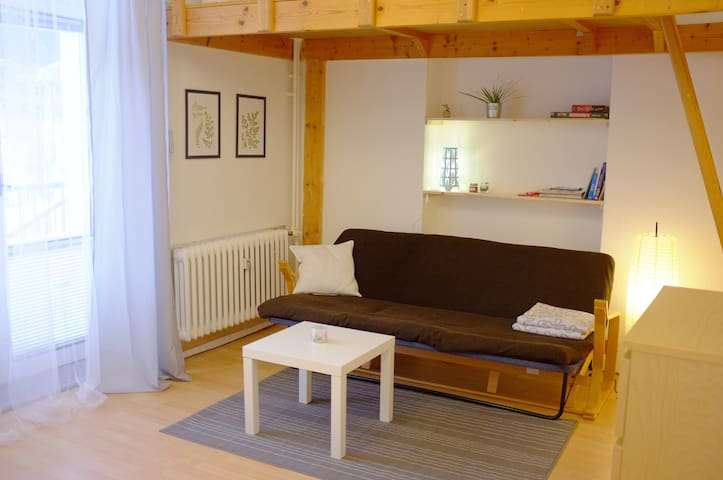 Bright apartment near city center with WiFi - Janské Lázně