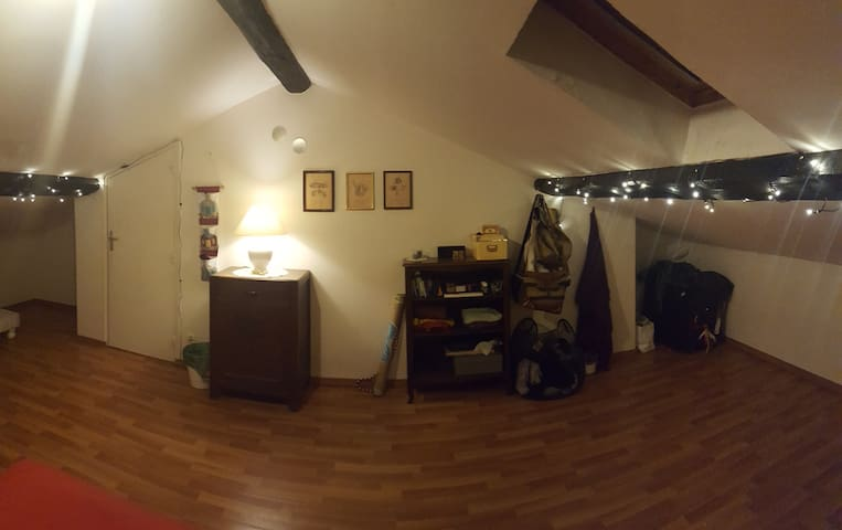 Spacious Attic Room! 1 Stop Away from downtown. - Lyon - Apartamento