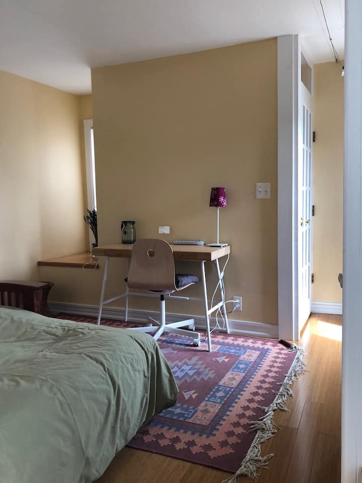 Private room and bath, walk to Harvard & MIT