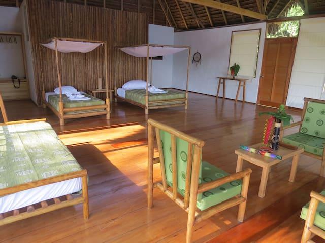 The jungle amazonian cottage