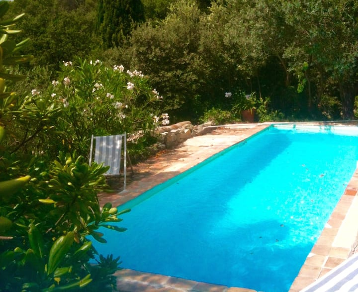 Lovely villa among pine trees