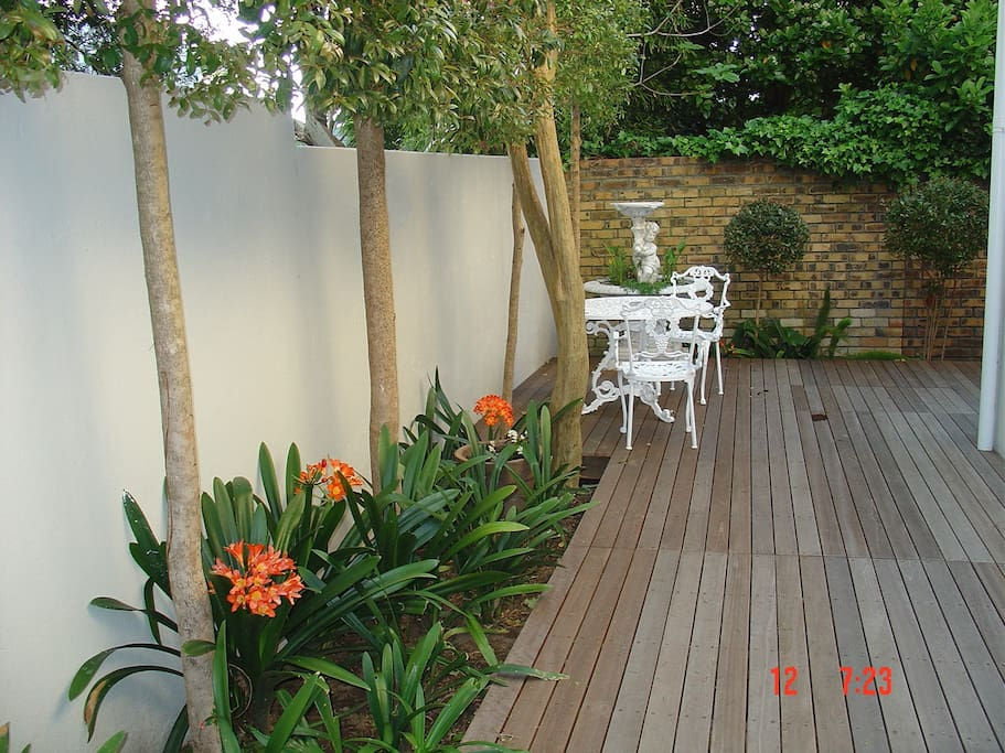 Your private back patio with Clivia in bloom.