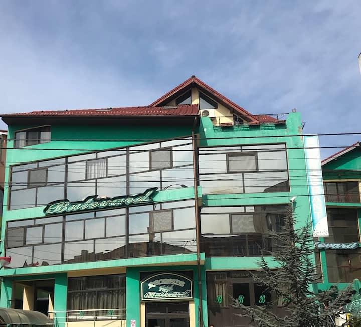 Bulevard Hotel in Drobeta Turnu Severin