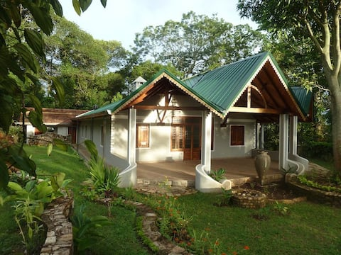 Unique villa in the mountain jungle