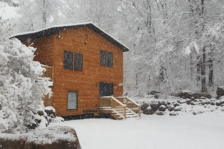 Placid Cabin in the Heart of the Village! - Lake Placid - 獨棟