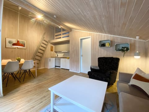 Nyoppusset lys og trivelig hytte nær Ål sentrum