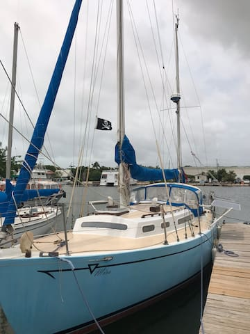 Stay on sailboat in beautiful Old Belize marina.