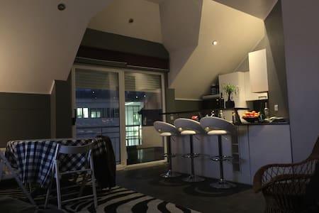 Chambre de 20 m2 avec sdd privative - Esch-sur-Alzette - Pis