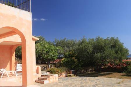 Monolocale con giardino San Teodoro - San Teodoro - Appartement