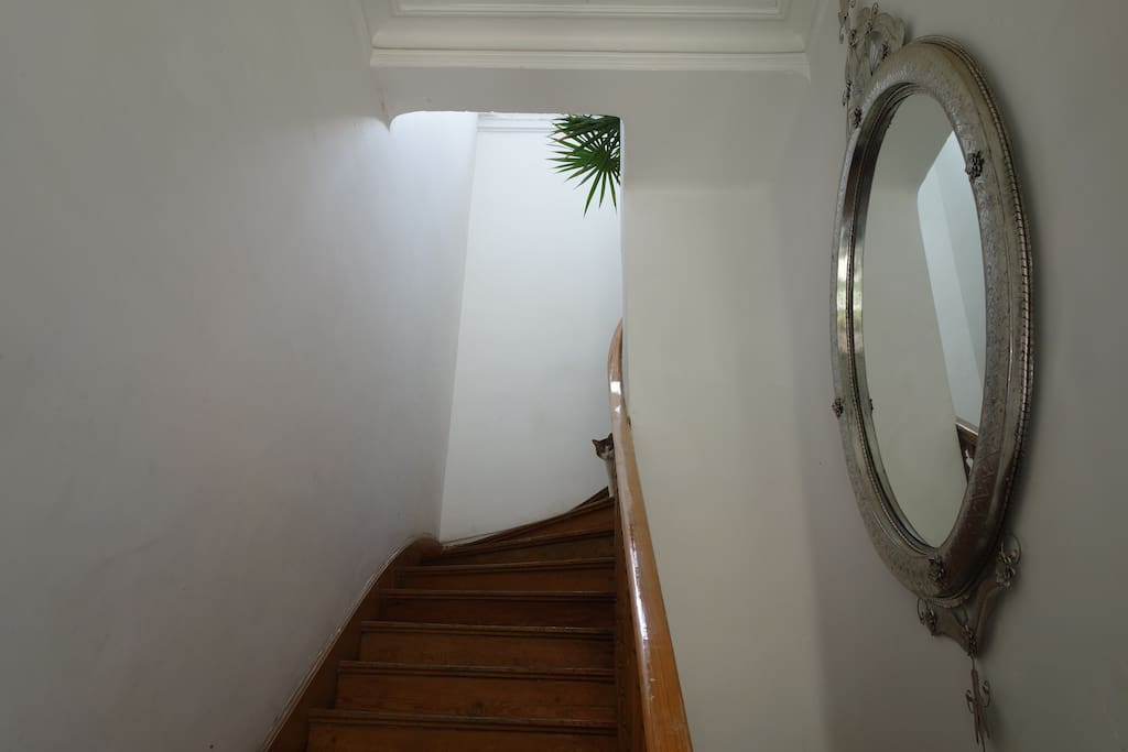 Apartment entrance.  The house is decorated with beautiful Mexican furniture, like this tin mirror by Casamidy. Paulino greeting from the top of the stairs.