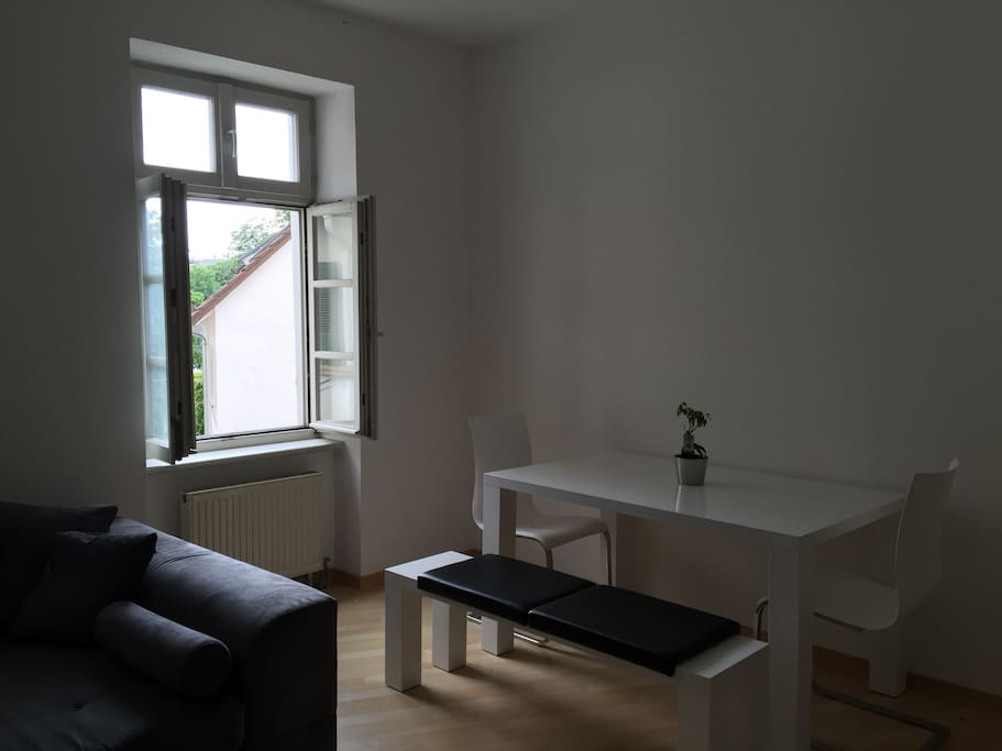 Dining table in the living room (with view on the Neckarwiese).