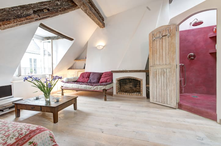 Nice flat w/ terrace in St-Germain - Paris