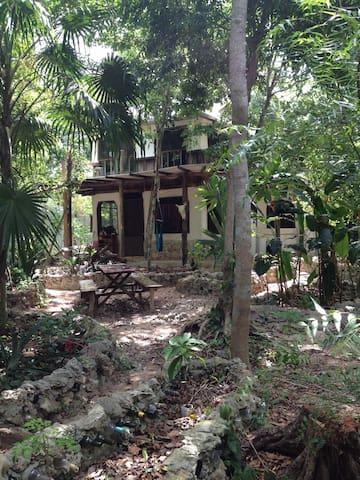 Panacea jungle gypsy house - Puerto Morelos - Dom