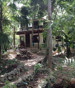 Panacea jungle gypsy house - Puerto Morelos