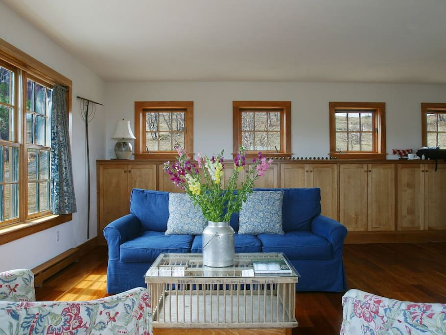 Sunny comfortable living room