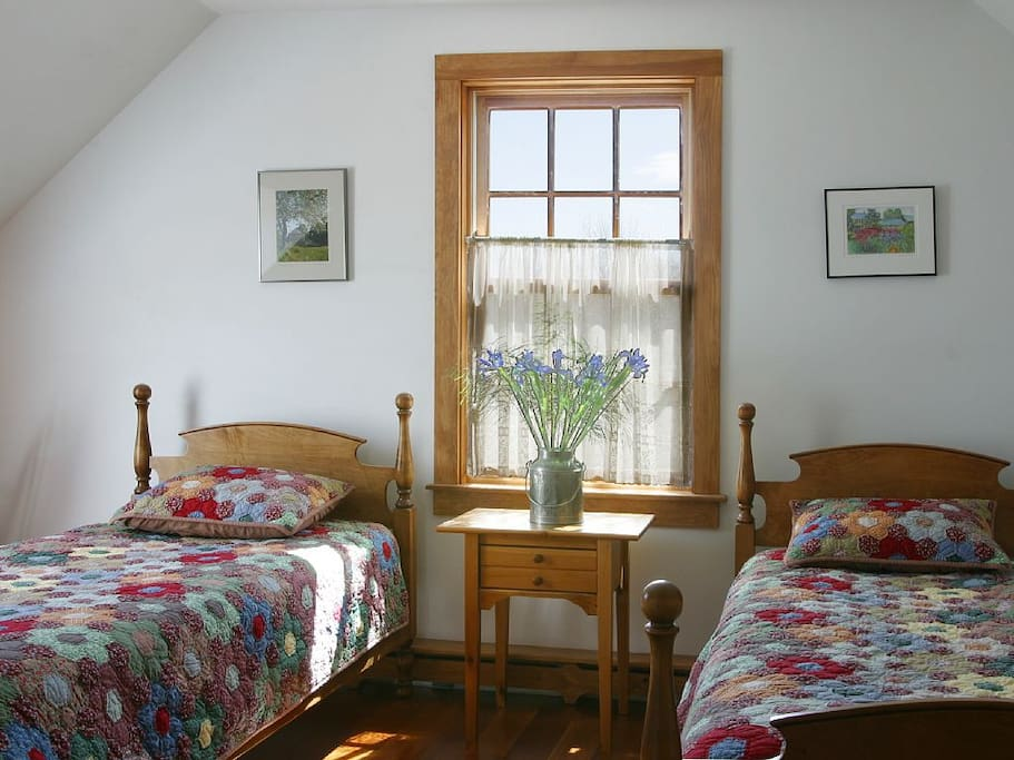 Twin Beds, closet, skylight