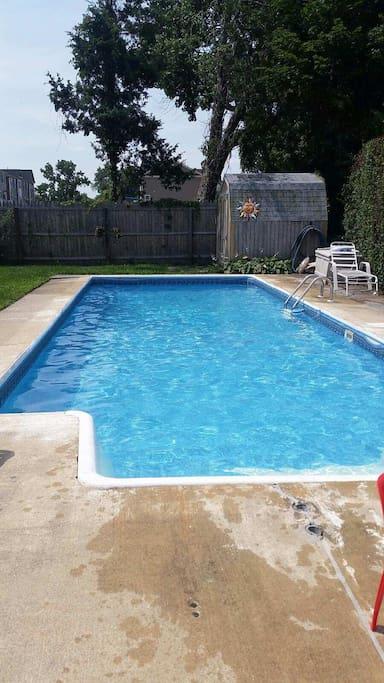 Backyard pool. So refreshing!