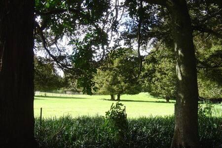 Private, 1 Bedrm Apt on a Farm near Tutukaka Coast - Whangarei