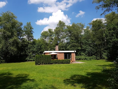 Cozy cottage in the forest in Oude Willem, Diever