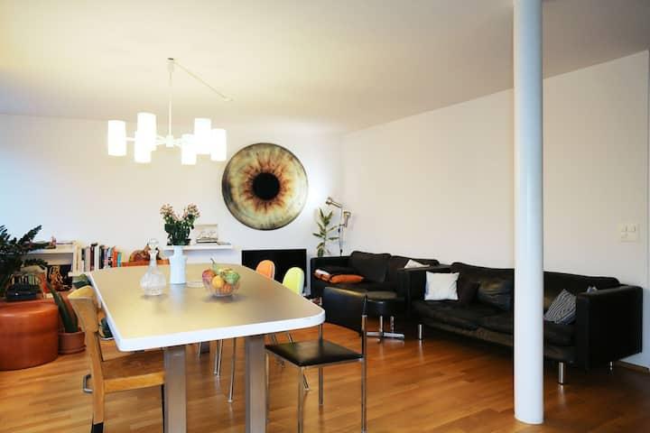 BASEL WORLD: Modern 2bdr flat