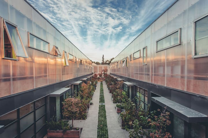 Airy Modern Sunny Loft - Oakland - Loft