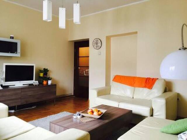 Shiney Apartment