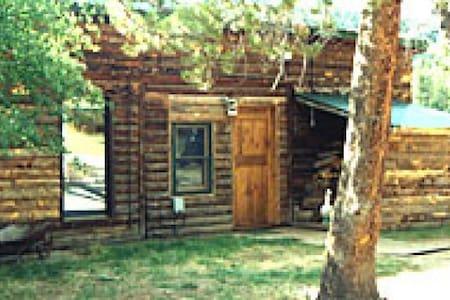 2BR/1BA Cabin on Private Lake!!! - Grand Lake - 小木屋