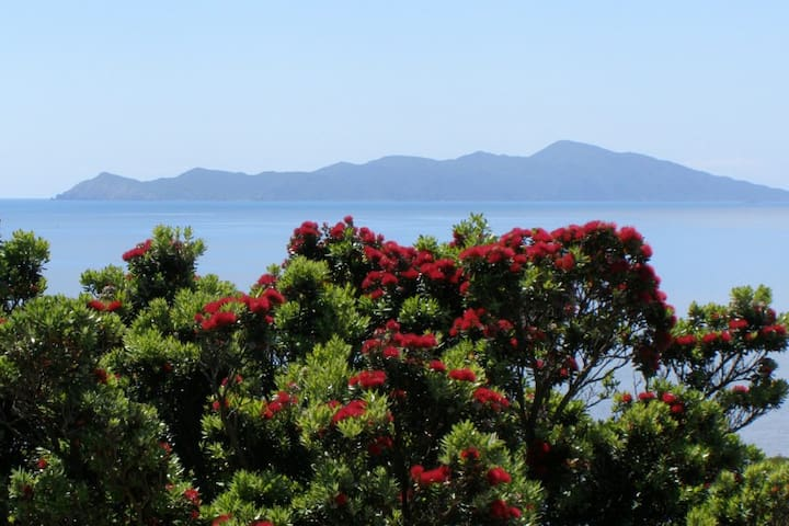 Beach Haven, Pukerua Bay - Pukerua Bay - Bed & Breakfast