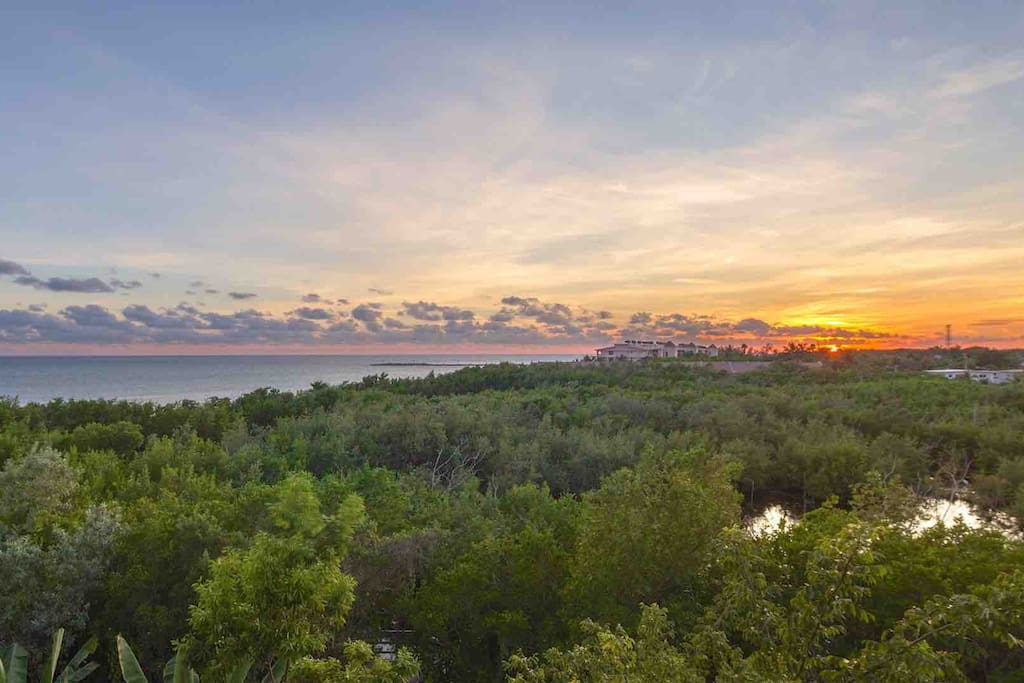 The property overlooks a nature preserve and the Atlantic Ocean...