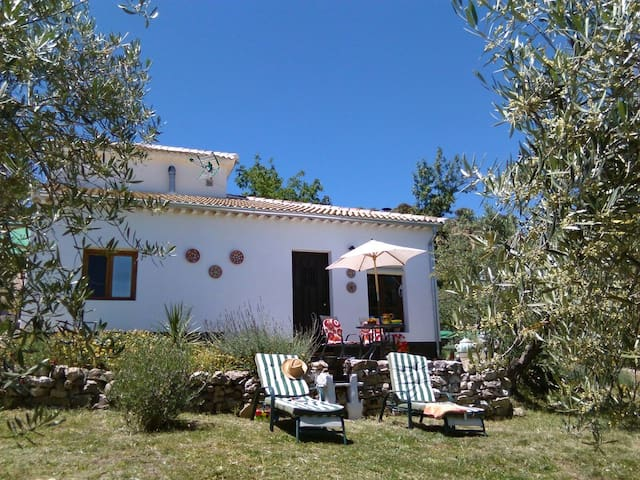 Casita in own olive grove with pool - Priego de Cordoba