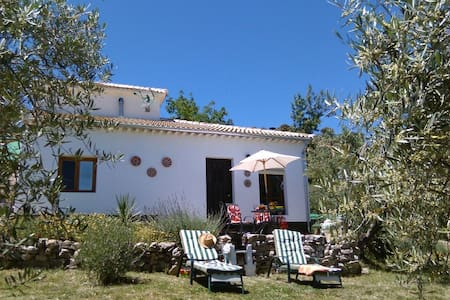 Casita in own olive grove with pool - Priego de Cordoba - Villa