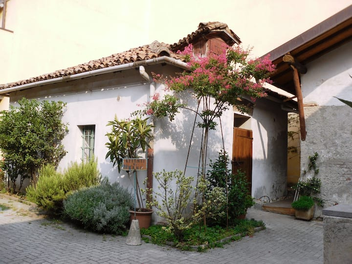 THE 8 DWARFS HOUSE