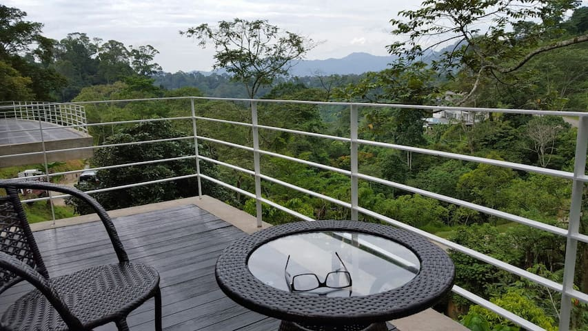 Charming highland glass house - Janda Baik  - Dom