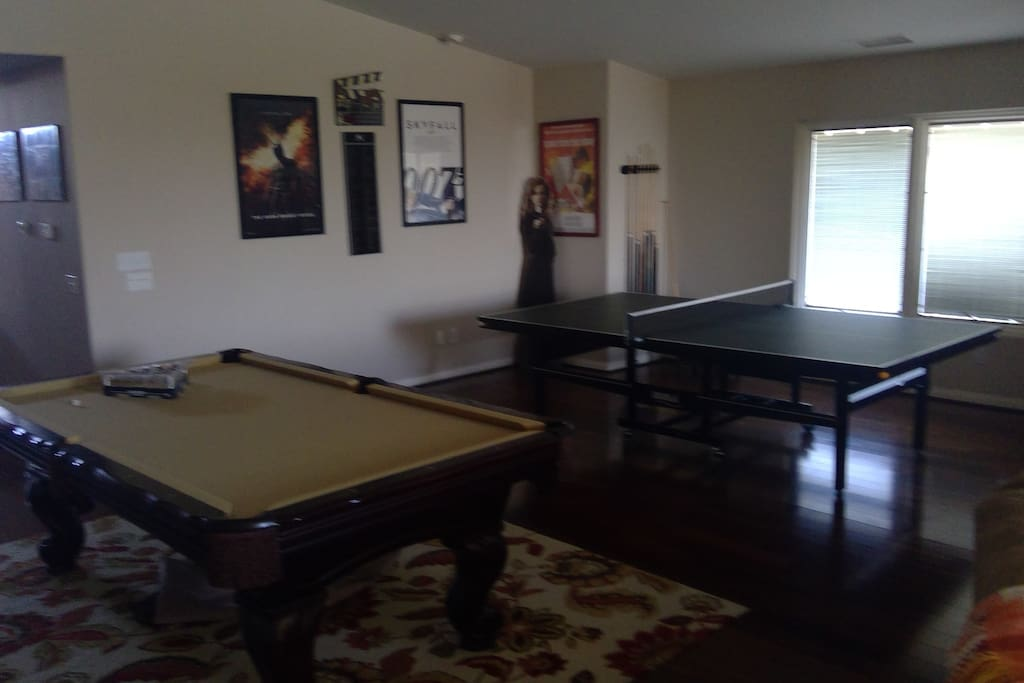 Pool Table & Tennis Table