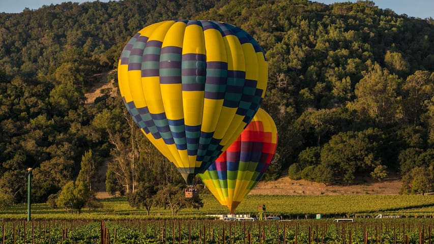 Wine Country Guidebook