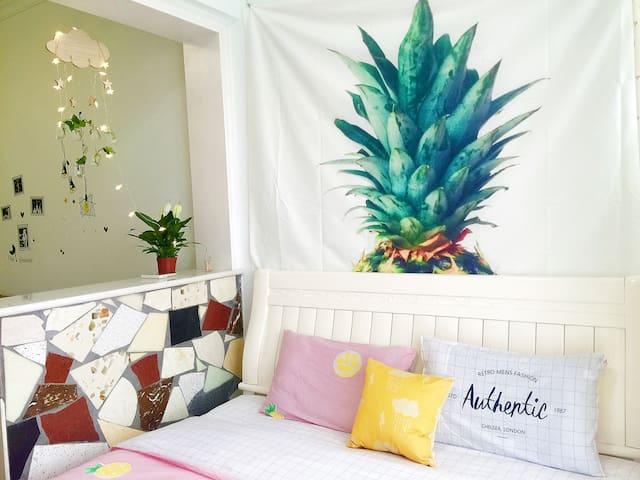 市中心万豪对面五洲富隆一室一厅热带水果