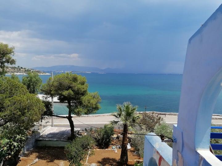 Seaside Vacations Villa 150 m² in 1,2 acres croft