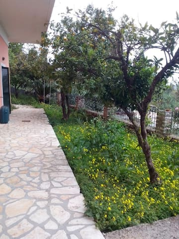 Comfy and Sunny home with spectacular view - Potamos - House