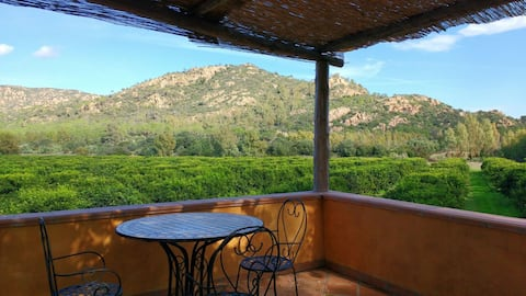 Charming apartment in the heart of a citrus farm.