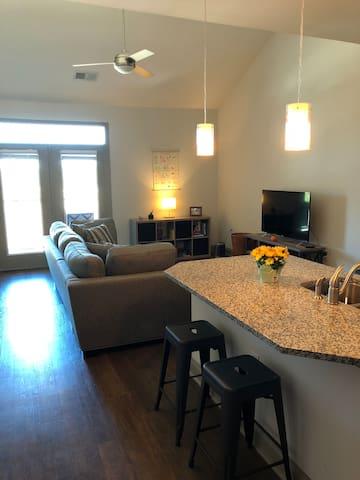 Modern Mountain Apartment