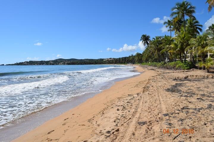 Luxury Beach Front Villa, Ground level