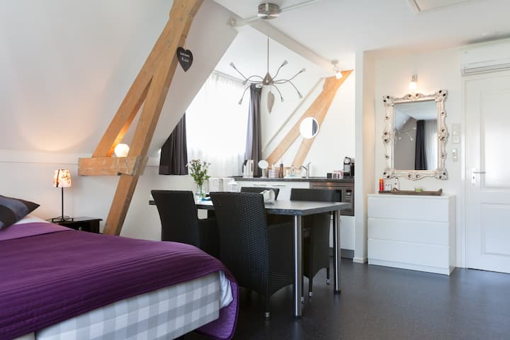 Luxury B&B city/Sonsbeek plus 1 day free bikes