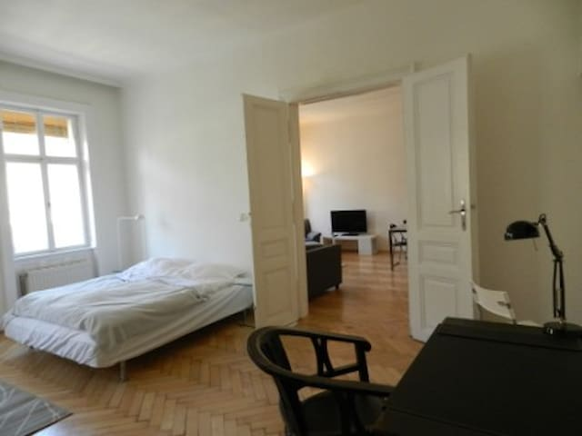 Lovely 80 m2 in central location - Wien - Apartment