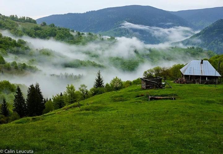 Casa Maria Valea Draganului