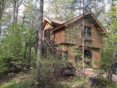 Treetop Cottage on Rainbow Lake