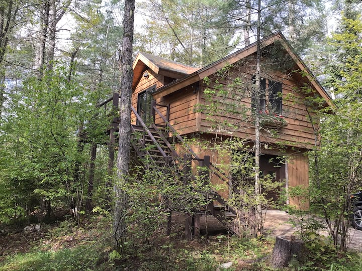 Treetop Cottage on Rainbow Lake