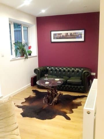 Double room +more in modern house - Londres - Casa