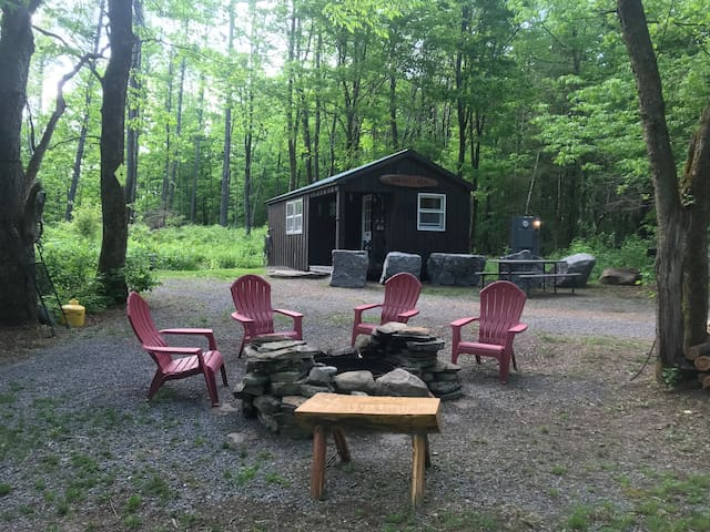 Bear Hill Cabin Adirondack style one room Cabin
