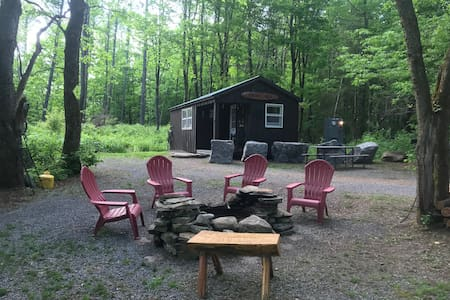 Bear Hill Cabin = Adirondack style one room Cabin