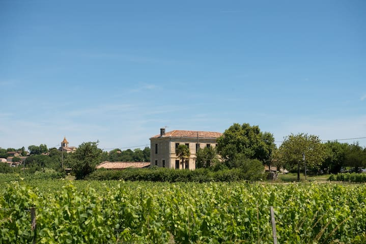 Maison au milieu des vignes - Cars - Rumah